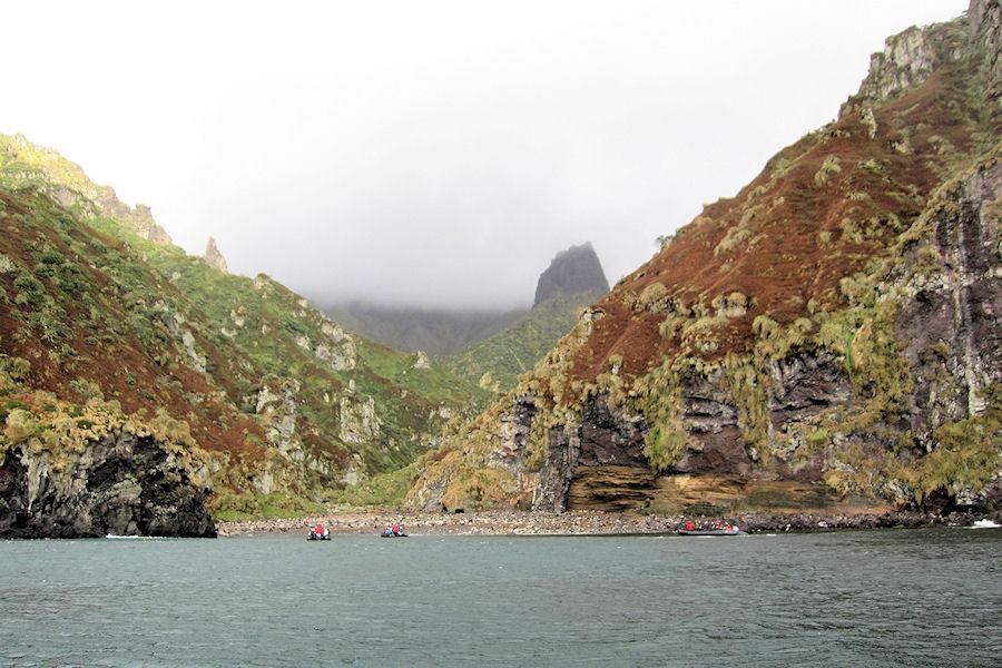 Gough Island Population